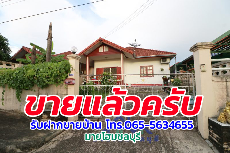 IMG_7909-2-5